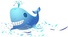 Whale Royalty Free Stock Photos