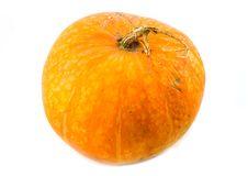 Free Big Beautiful And Useful Orange Pumpkin Royalty Free Stock Photos - 6627448