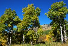 Free Sheep River Valley In Autumn Stock Photography - 6628372