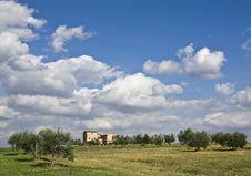 Free Tuscan Landscape Royalty Free Stock Image - 6629646