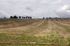 Free Agriculture Landscape Royalty Free Stock Photography - 6629877