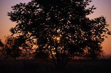 Free Sunset Stock Photography - 6629912