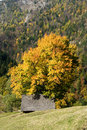 Free Colors Of Autumn In Romania Stock Photo - 6632420