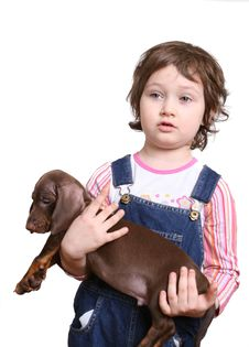 Little Girl With Dachshund Puppy Royalty Free Stock Photos