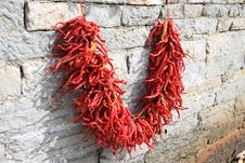 Free Red Chili  At Back Yard Stock Images - 6630704