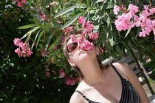 Free Fragrance Stock Photos - 6630773