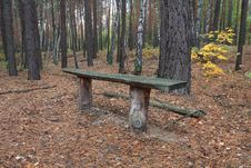 Free Bench In Autumn Forest Royalty Free Stock Images - 6630789