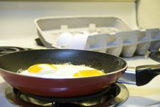 Free Fried Eggs Stock Photography - 6631382