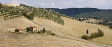 Free Tuscan Landscape, View On The Hills Royalty Free Stock Photos - 6631448