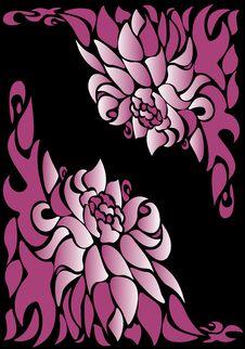 Free Pink Flower Royalty Free Stock Image - 6632166