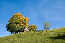 Free Autumn Colors In Transylvania Royalty Free Stock Image - 6632276