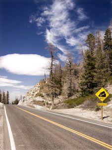 Free Mountain Road Royalty Free Stock Photos - 6632438