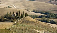 Free Tuscan Landscape, Isolated Farm With Cypress Royalty Free Stock Photos - 6632798