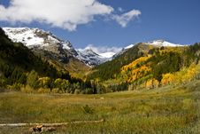 Free Autumn Meadow Stock Photography - 6633032