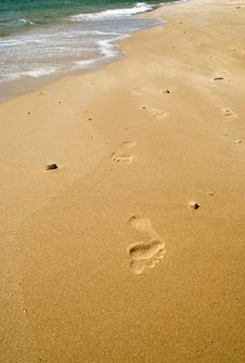 Free Footsteps On The Beach Stock Image - 6634491