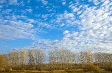 Free Beautiful Sky And Autumn Trees Stock Photography - 6636342