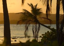 Free Sunset Stock Photography - 6636872