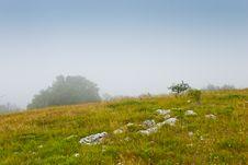 Free Misty Morning Stock Photo - 6637550