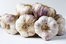 Group Of French Garlic Bulbs Royalty Free Stock Photos