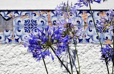 Free Worn Azulejo Tiles And Flowers Stock Photo - 66312960
