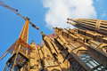 Free Sagrada Familia Royalty Free Stock Photography - 6646937