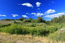 Free The Grand Teton National Park Royalty Free Stock Images - 6640839