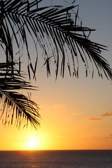 Free Tropical Sunset Royalty Free Stock Images - 6641349