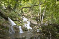 Free Waterfall In Forest Stock Photo - 6642640