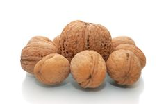 Free Huge Walnuts And Many Small Walnuts Stock Photography - 6642682