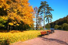 Free Autumn Park Royalty Free Stock Images - 6645559