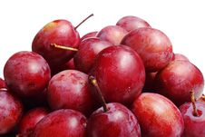 Free Plums Stock Photos - 6648853