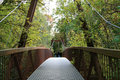 Free Iron Bridge Royalty Free Stock Image - 6657556