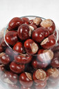 Free Beautiful Chestnuts Background Stock Photography - 6659262