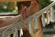 Free Female Feet On Hammock Royalty Free Stock Image - 6650246