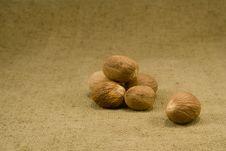 Free Nutmeg Royalty Free Stock Photo - 6650405