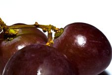 Free Black Grapes Royalty Free Stock Image - 6650446