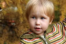 Free Child In Autumn Park Royalty Free Stock Photo - 6650815