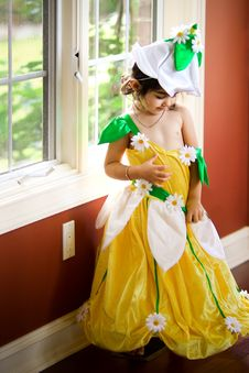 Free Flower Fairy Stock Images - 6651464