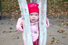 Free Pretty Little Girl Stay Behind Tree. Royalty Free Stock Image - 6652046