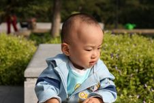 Free Young Boy Royalty Free Stock Photography - 6653547