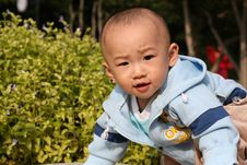 Free Young Boy Royalty Free Stock Photos - 6653548