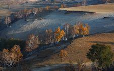 Free Bashang Grassland Royalty Free Stock Image - 6654586