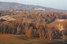 Free Bashang Grassland In Inter-Mongolia  Of China Stock Photo - 6654620