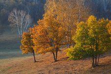 Free Bashang Grassland In Inter-Mongolia  Of China Royalty Free Stock Photography - 6654717