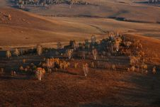 Free Bashang Grassland In Inter-Mongolia  Of China Stock Photography - 6654852