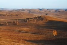 Free Bashang Grassland In Inter-Mongolia  Of China Royalty Free Stock Images - 6654869