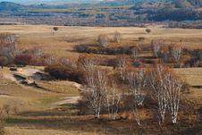 Free Bashang Grassland In Inter-Mongolia  Of China Stock Photos - 6654933