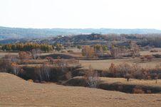 Free Bashang Grassland In Inter-Mongolia  Of China Royalty Free Stock Photo - 6654945