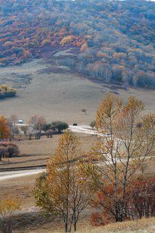 Free Bashang Grassland In Inter-Mongolia  Of China Royalty Free Stock Photos - 6655078