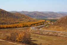 Free Bashang Grassland In Inter-Mongolia  Of China Royalty Free Stock Images - 6655099